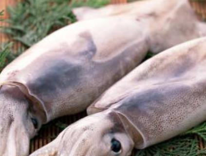 赣榆鱿鱼:连云港赣榆区特产鱿鱼,产地海鲜产品鱿鱼小管,产地宝