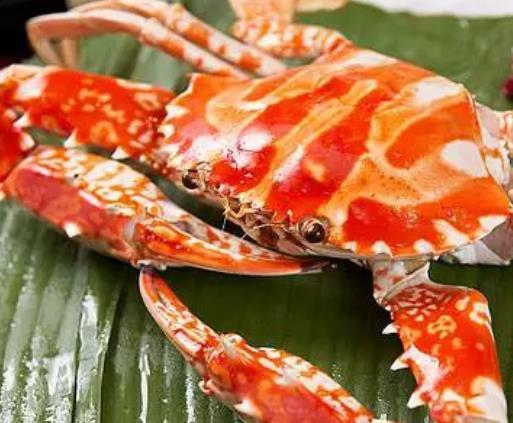 赣榆锈斑蟳花蟹:连云港赣榆特产锈斑蟳花蟹,产地海产品,产地宝
