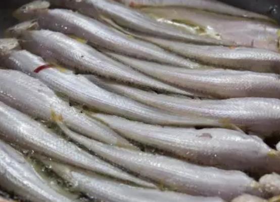 赣榆凤鲚:连云港赣榆区特产凤鲚,产地水产品凤鲚鱼,产地宝